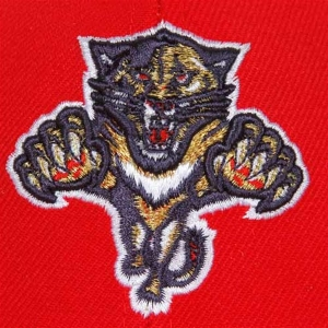 Florida Panthers nhl reebok хоккейная бейсболка красная