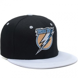 Tampa Bay Lightning nhl tisa snapback кепка черная