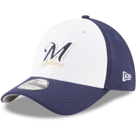 Milwaukee Brewers mlb new era flex diamond спортивная бейсболка белая