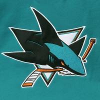 San Jose Sharks nhl хоккейная спортивная кофта голубая