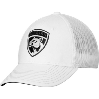 Florida Panthers nhl adidas flex-fit tonal хоккейная бейсболка белая
