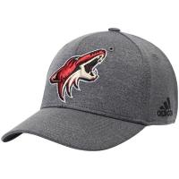 Arizona Coyotes nhl adidas flex-fit хоккейная бейсболка серая