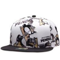 Pittsburgh Penguins nhl '47 brans snapback хоккейная кепка с прямым козырьком